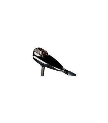 electric outboard Fox FX28